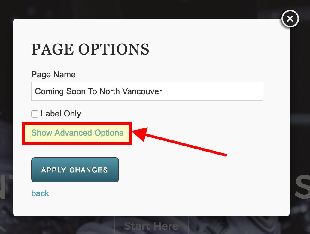 RealtyNinja Advanced Page Options