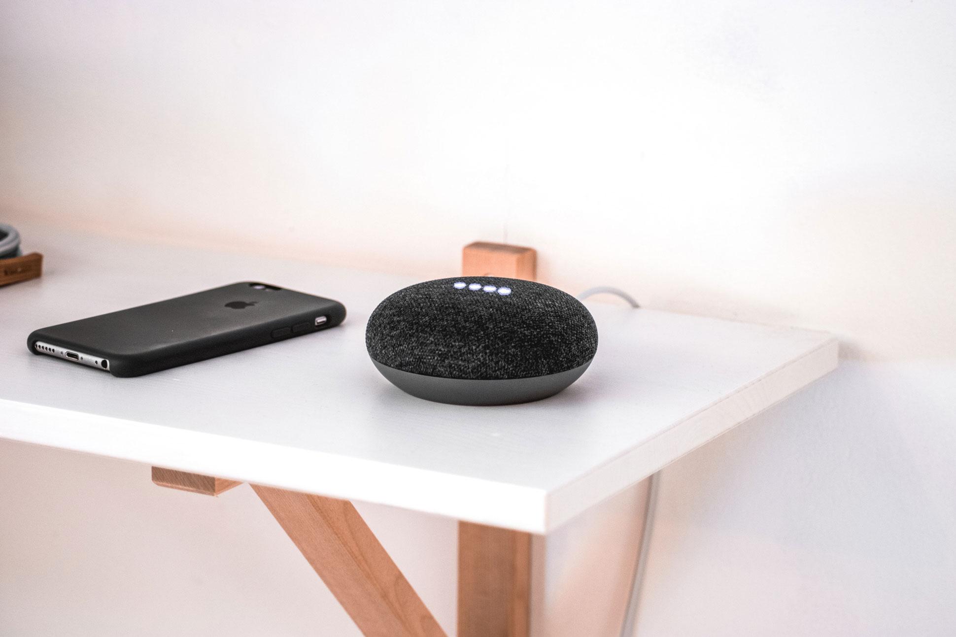 Google Mini Voice Speaker for the home