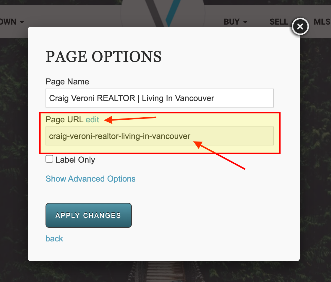 Change your Page URL on your RealtyNinja Site